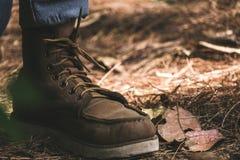 Tragende Stiefel eines Mannes während Trekking in einem tropischen Wald stockbild