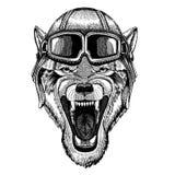 Tragender Fliegertiersturzhelm mit Gläsern Die Schlangejagd im Labyrinth Gezeichnete Illustration Wolf Dog Wilds Tierhand für Tät vektor abbildung