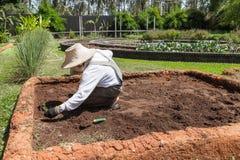 Tragender Hut des Landwirts und weißes Hemd bereitet Boden für agricul vor Stockbilder