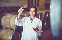 Tragender Mantel der Frau, der Glas Wein auf Weinkellerei hält stockbild