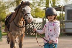 Tragender Sturzhelm des jungen Mädchens Reit, derwaliser-Pony führt stockbild