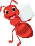 Tragender Zucker der glücklichen Ameisenkarikatur Stockfotografie