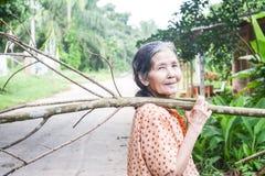 Tragendes Brennholz der alten thailändischen Frau auf ihrer Schulter Stockbilder