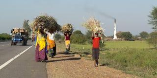 Tragendes Feuerholz der Gruppe von Personen Stockbilder