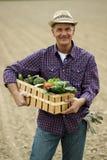 Tragendes Gemüse des Landwirts lizenzfreies stockfoto