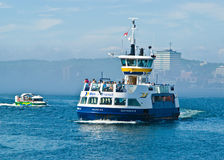 Traghetto del Dartmouth Fotografia Stock Libera da Diritti