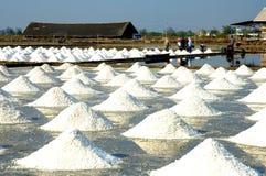 Traiettoria dell'azienda agricola del sale del Samut Sakhon Fotografie Stock