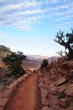 Trail. In the Grand Canyon National Park Royalty Free Stock Images
