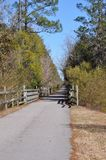 trail Royaltyfri Bild