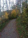 trail Royaltyfria Foton