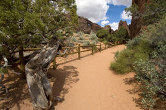 Trail in Aches National park Stock Photos