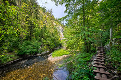 Trail along the Hornad river, Slovak Paradise. Dangerous trail along the Hornad river, Slovak Paradise stock photo