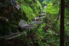 Trail along the Hornad river, Slovak Paradise Stock Photography