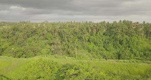 Trail artist Bali, Indonesia. 4k video stock video footage