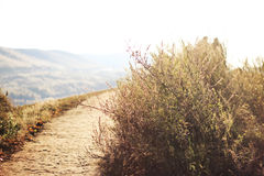 Trail. Autumn trail on the hillside Royalty Free Stock Photography