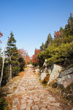 Trail in Autumn Karkonosze Mountains Stock Photography