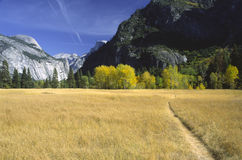 Trail through an autumn meadow in Yosemite Stock Photo