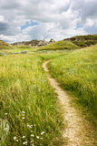Trail in Badlands in Alberta, Canada Royalty Free Stock Photo