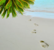 Trail barefoot feet in the sand Royalty Free Stock Photography