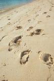 Trail on beach Royalty Free Stock Photos