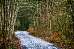 Trail Bend Around the Corner Royalty Free Stock Images