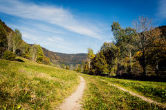 Trail in the black forest, feldberg tower in the background Royalty Free Stock Images