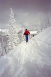 Trail Blazer Stock Image