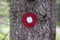 Trail blazing. Red and white circle trail blazing sign in the forest royalty free stock images