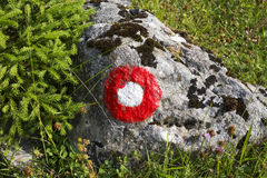 Trail blazing. Red and white circle trail blazing sign in the forest royalty free stock image