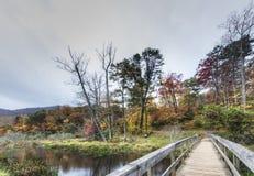 Trail in the Blue Ridge Mountains Stock Photos