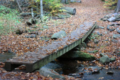 Trail Bridge. Along the Falls Trail in Ricketts Glen State Park, Benton, PA, USA Stock Images