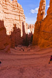 On a Trail in Bryce Canyon National Park Stock Photos