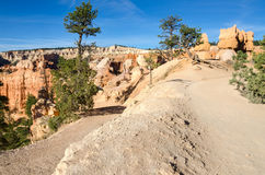Trail in Bryce Canyon Royalty Free Stock Photography