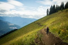 Trailbuilder walks out on the mountain trail to build more Stock Images