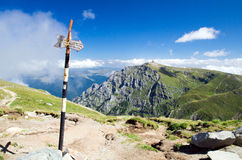 Trail in the Carpathians Stock Images