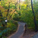 Trail in Central Park in Fall Stock Photos