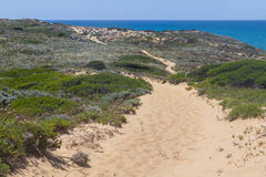 Trail in the Cliffs on the beach,  Vila Nova de Milfontes Royalty Free Stock Image