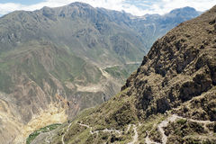 Trail into Colca Canyon Royalty Free Stock Photography