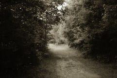 Trail at Daniel Stowe Botanical Gardens stock images