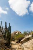 Trail Through Desert Royalty Free Stock Image