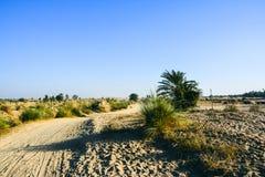 Trail in a desert. A trail in a desert near Shumar Quaidabad - Khushab Pakistan Royalty Free Stock Photography