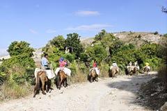 Trail of Donkey Riding Women Stock Photos