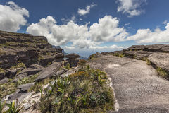 Trail down from the plateau Roraima passes under a falls - Venez Royalty Free Stock Photo