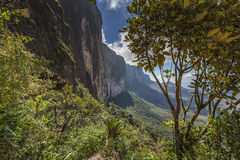 Trail down from the plateau Roraima passes under a falls - Venez Royalty Free Stock Images