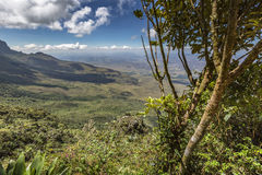 Trail down from the plateau Roraima passes under a falls - Venezuela, South America.  stock photos