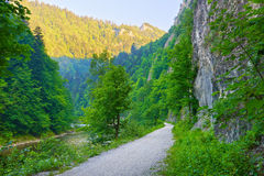 The Dunajec River Gorge trail. Pieniny Mountains. Trail by The Dunajec River Gorge. The Pieniny Mountains. National border between Poland and Slovakia Royalty Free Stock Images