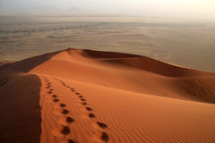 A Trail in the Dune Royalty Free Stock Photography