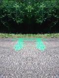 trail för albrtacykelcalgary fall royaltyfri foto