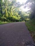 trail för albrtacykelcalgary fall royaltyfri bild
