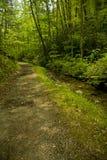 trail för mellanrumsschoolhousefjäder Royaltyfri Fotografi